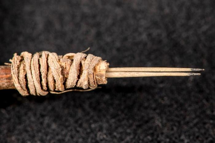 这件刺青工具于1970年代出土,其后45年间被埋没在储藏室里,直到最近一名研究人员察觉到它可能的用途。PHOTOGRAPH BY ANDREW GILLREAT