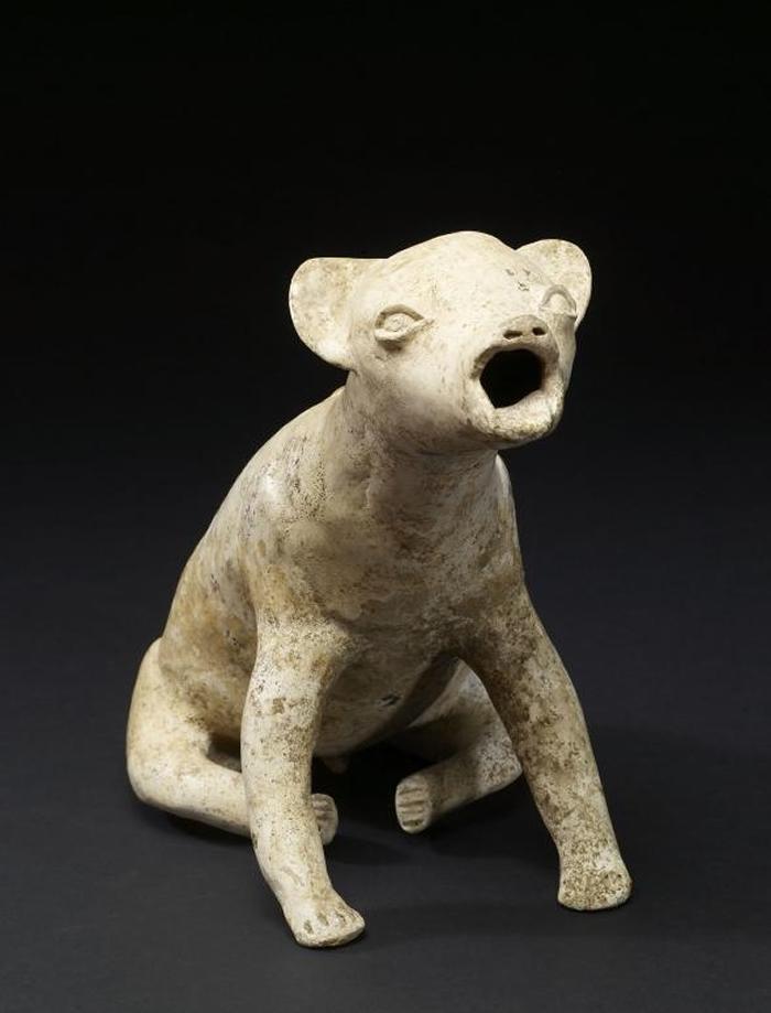 这只有2000年历史的「嗥叫的狗」雕像出土于西墨西哥科利马州(Colima)。 它或许是要呈现前哥伦布时期(Pre-Columbian era)该地区闻名的一种