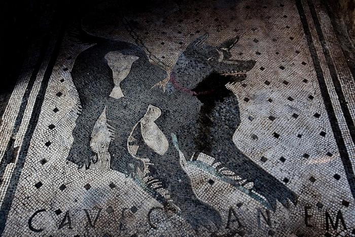 这幅位于庞贝城(Pompeii)一座建筑物入口处的马赛克 上标示着「Cave Canem」──拉丁文「小心恶犬」的意思。 它在公元79年的维苏威火山(Vesuv
