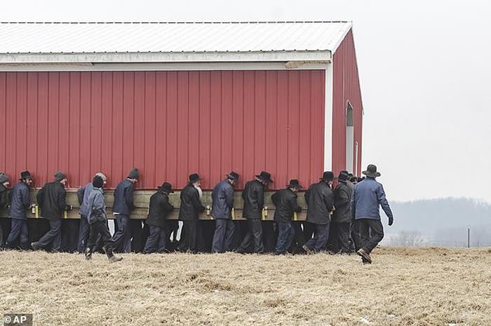 美国250名阿米希人合力徒手抬起谷仓移离46米