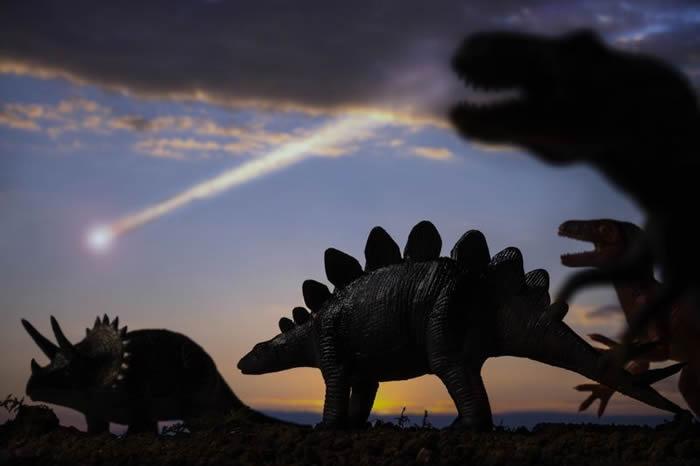 """美国北达科他州发现""""断称两半的鱼化石"""" 专家:小行星6600万年前撞击地球的重要证据"""