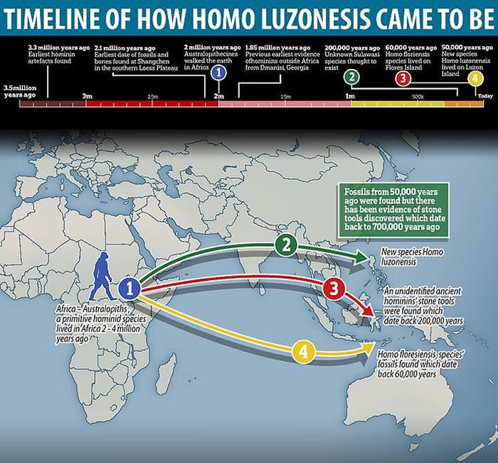 """菲律宾吕宋岛卡劳洞穴发现数万年前全新人种""""吕宋人""""(Homo luzonensis)化石"""