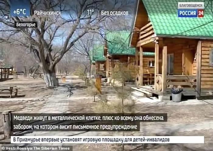 俄罗斯女子参观私人动物园进入围栏内喂食棕熊 左手被啃断