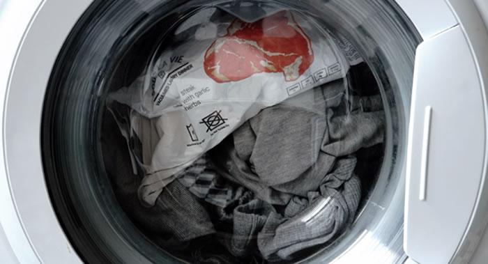 """澳大利亚一只六个月大的小猫在洗衣机里""""被洗""""半小时后得以幸存"""