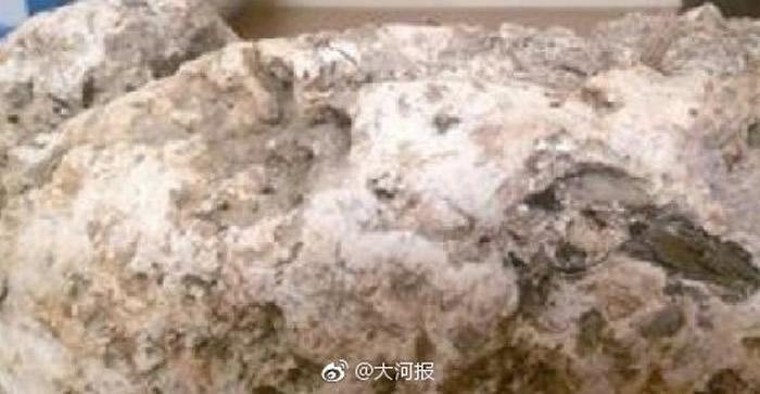 """福建省厦门市男子海滩捡到腥臭怪石想要丢掉 专家称可能是价值70万人民币的""""龙涎香"""""""
