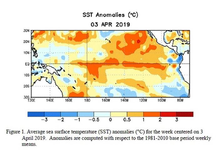 最新数据显示北半球太平洋海平面温高于水平,令厄尔尼诺现象持续。