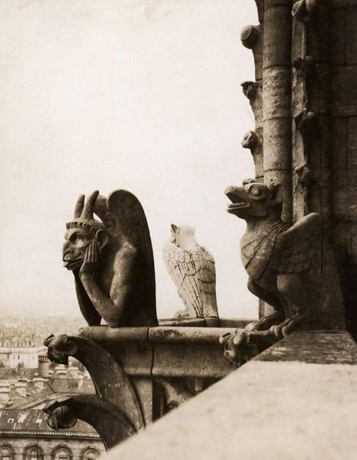 名为「思提吉」(Le Stryge)──也就是「吸血鬼」──的滴水嘴兽,就安坐在圣母院的北塔上面。 这座滴水嘴兽是在1800中叶翻修圣母院时加上去的。 PHOT