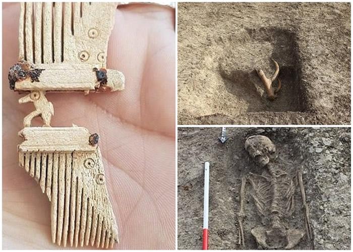 除了人骨以外,还发现动物骸骨、装饰梳子等。