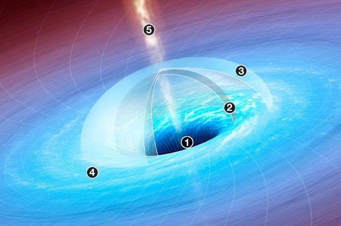 超大质量黑洞的质量可能达到太阳的数十亿倍,而它们的起源至今仍是未解之谜。 JASON TREAT AND ALEXANDER STEGMAIER, NGM ST