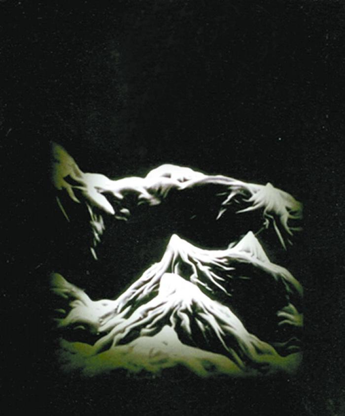 显微镜下的双峰乳突状水稻植硅体写意图片。