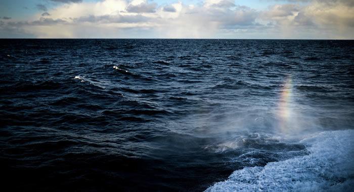 《细胞》杂志:国际科学家小组计算出在海洋里生活着195728种细菌