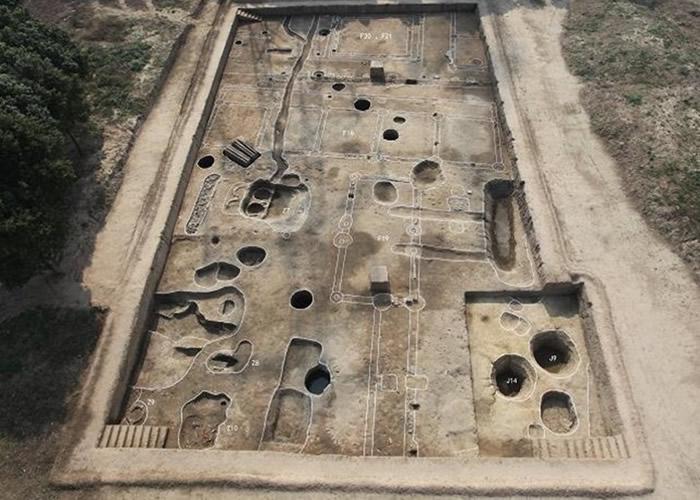 黄泗浦遗址内含不少唐代文物。