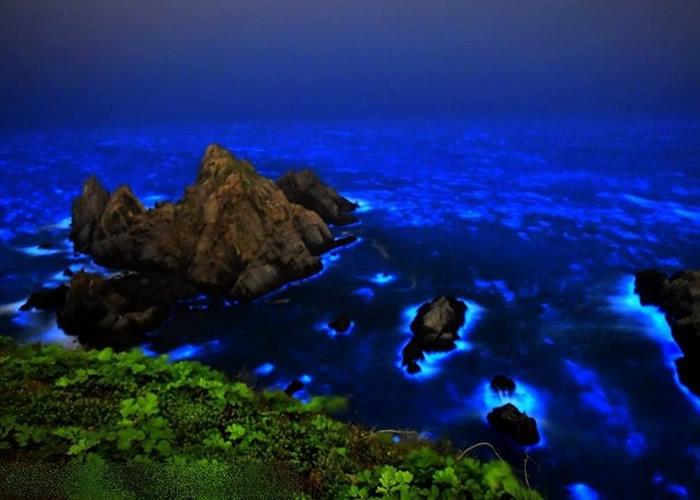 """有民众在马祖列岛海边,发现名为""""蓝眼泪""""的奇景。"""