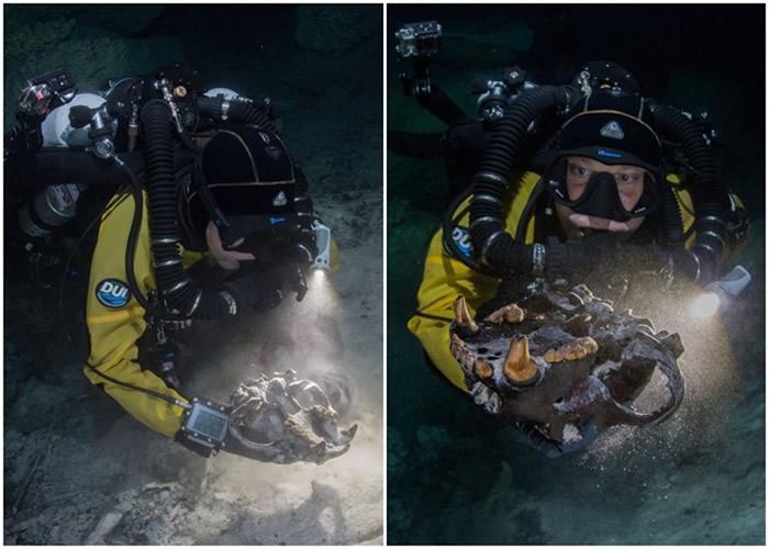墨西哥犹加顿半岛东岸海底洞穴藏珍奇生物化石 助了解中美州生态历史