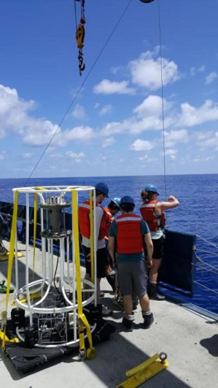 太平洋墨西哥海岸发现为了维持生命从砷中接受