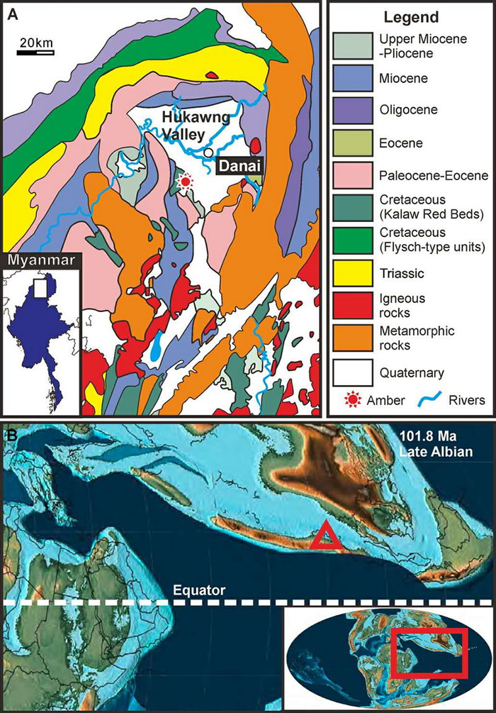 缅甸琥珀矿的地质图(A)和古地理图(B)