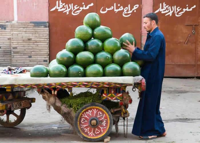栽培西瓜起源于非洲 3500年前古埃及人就能吃到又红又甜的西瓜