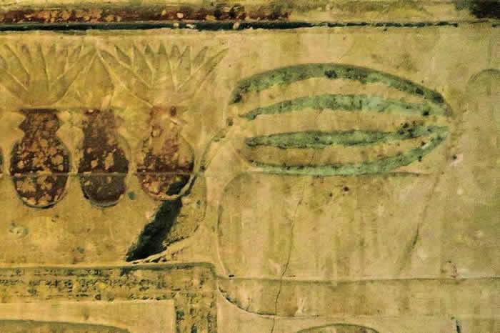 至少三座古埃及陵墓的墙壁上都描绘了西瓜