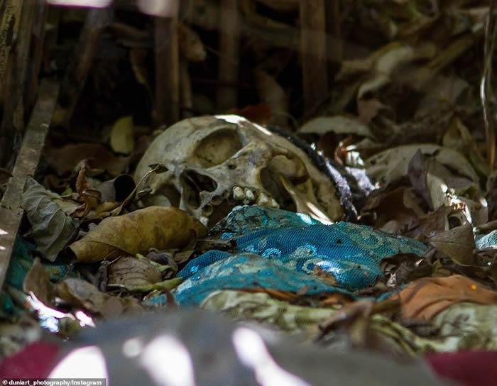 印尼巴厘岛有一处天葬村(Trunyan)