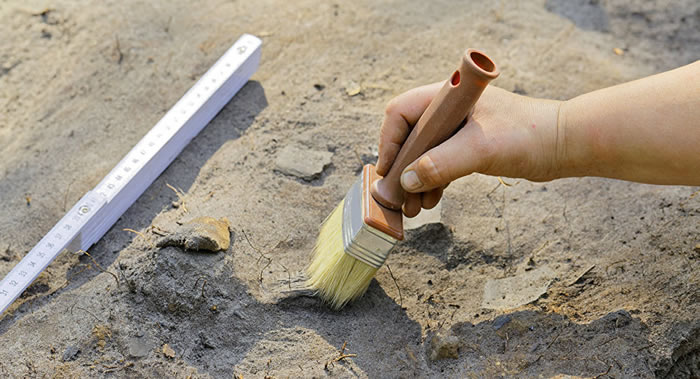 放射性碳素年代测定帮助区分出西伯利亚新的考古学文化——巴拉巴文化