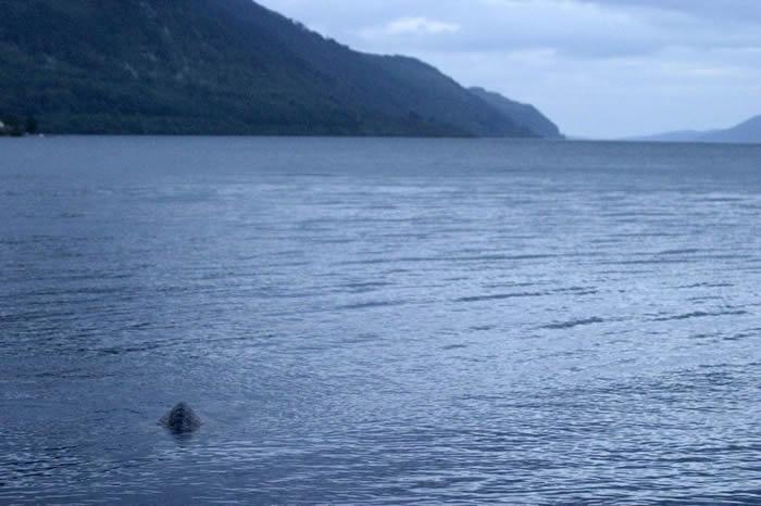 尼斯湖水怪是真的?新西兰奥塔哥大学研究团队:某种理论或成立