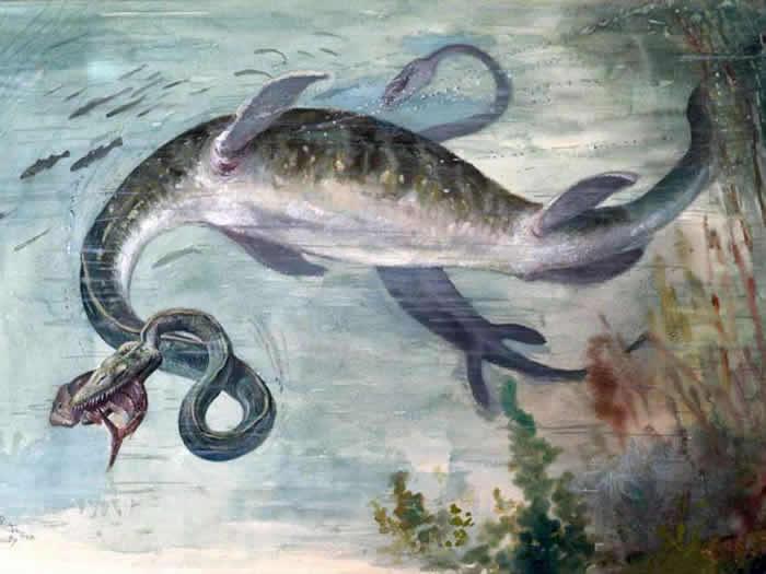 南极洲发现世界上最大的远古海怪遗骸——薄板龙