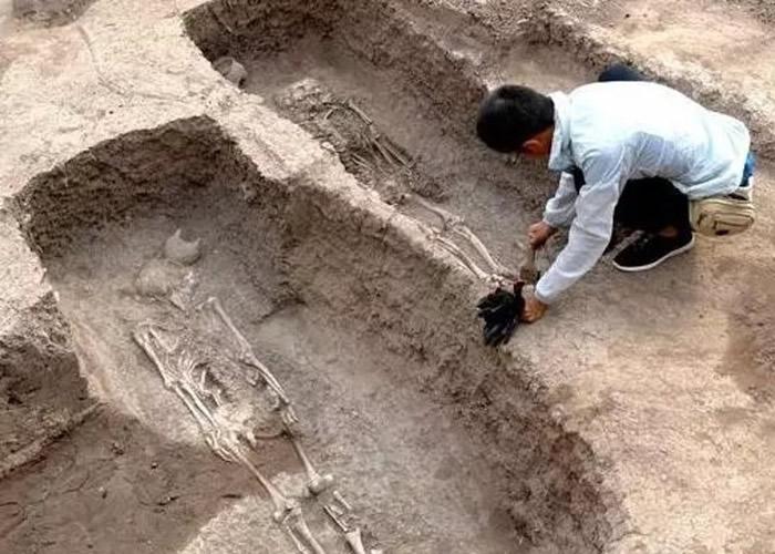 专家在现场中发现骸骨。