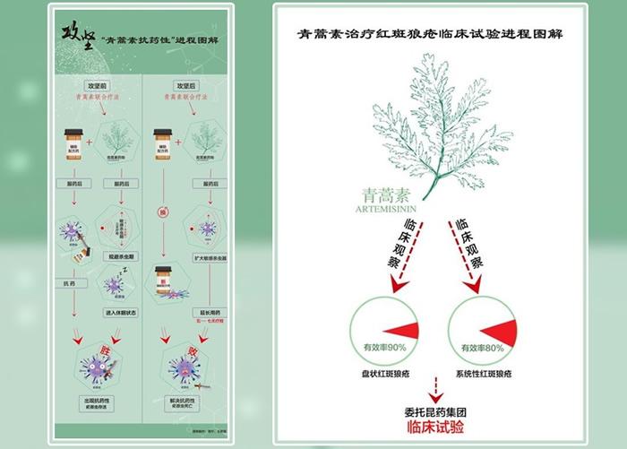 抗疟疾疗法新突破 中国诺贝尔奖得主屠呦呦团队破解对青蒿素抗药性难题