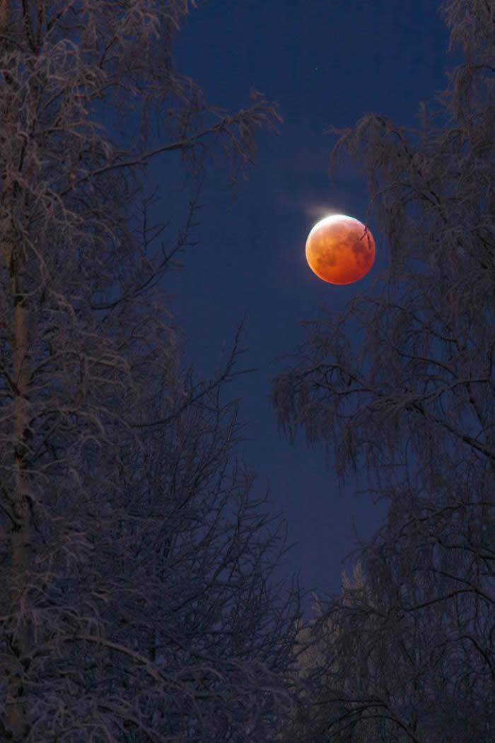 芬兰摄影师Keijo Laitala 的作品Bloodborne© 照片: KEIJO LAITALA/INSIGHT INVESTMENT ASTR