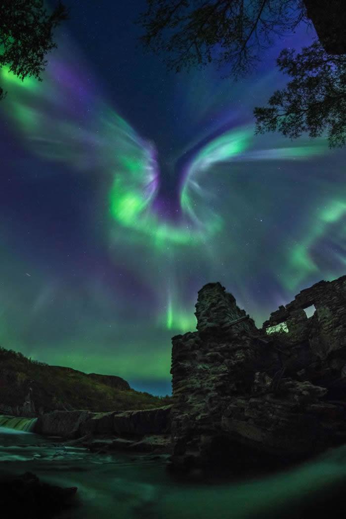 俄罗斯摄影师亚历山大·斯杰潘年科 的作品Aurora is a bird© 照片: ALEXANDER STEPANENKO/INSIGHT INVE