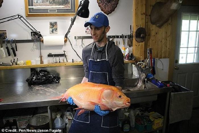 美国明尼苏达州男子在湖中抓到一条100岁基因突变大嘴水牛鱼