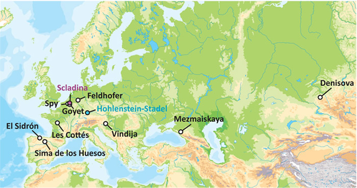 DNA新研究开始厘清尼安德特人的早期历史