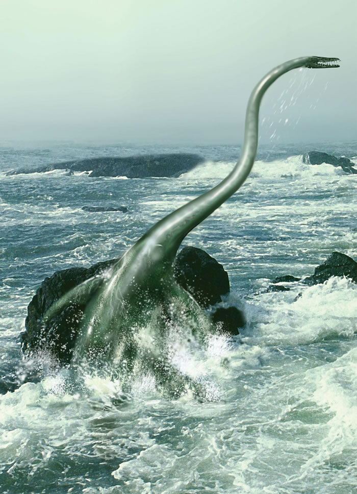 """《国家地理频道》:南极洲小岛发现7000万年前的""""尼斯湖水怪""""——薄板龙"""