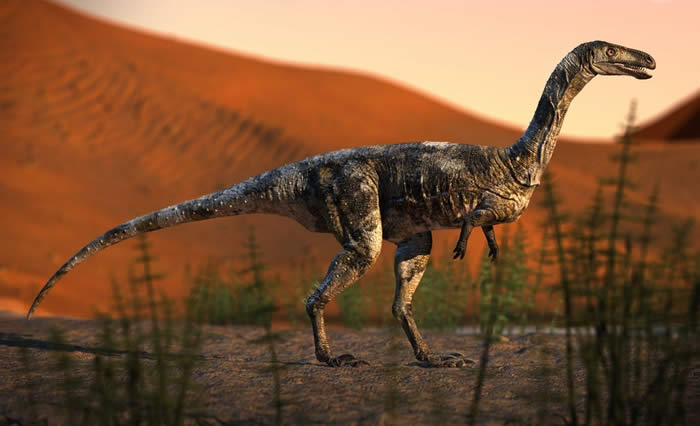 """新食肉恐龙Vespersaurus paranaensis拥有的可怕趾爪""""武器""""是迅猛龙的两倍"""