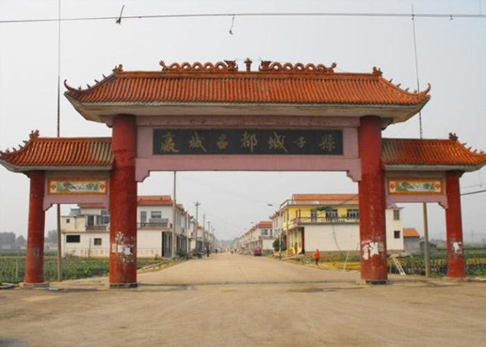 专家确认嬴秦起源地为现今莱芜城子县村。