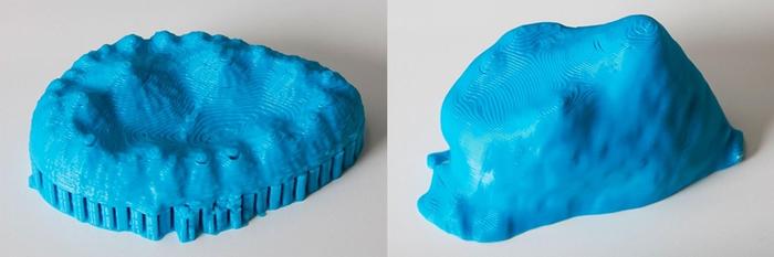 这对3D打印模型展示出两种已灭绝鳄鱼表亲的牙齿复杂形状。 这些形状显示这些久远以前的鳄鱼吃素。 PHOTOGRAPH BY MARK JOHNSTON, NHM