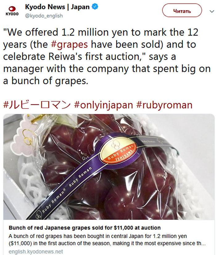 """日本商人在拍卖会上买下一串1.1万美元的""""罗马红宝石""""品种葡萄"""