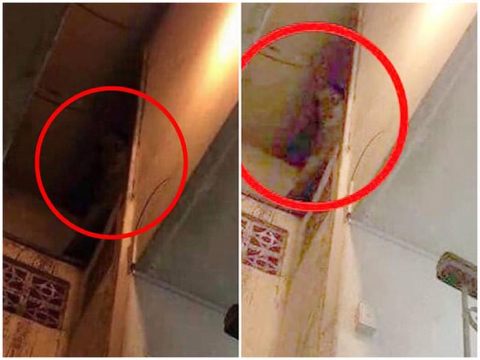 泰国网友看到女鬼照后回忆起鬼屋:吊扇自转 薰衣草味变咸鱼味
