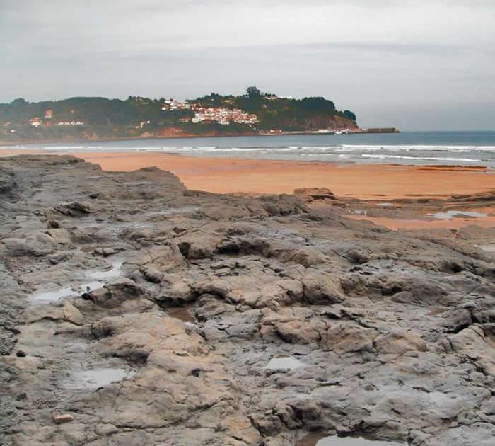 西班牙北部和中国云南禄丰在侏罗纪末期生活着