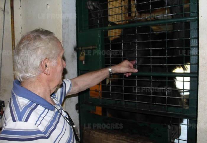 动物园的负责人皮埃尔·蒂维隆(Pierre Thivillon)展示了与黑猩猩接触时通常做出的姿态,以确保他们的屈服。(Photo Xavier ALIX)