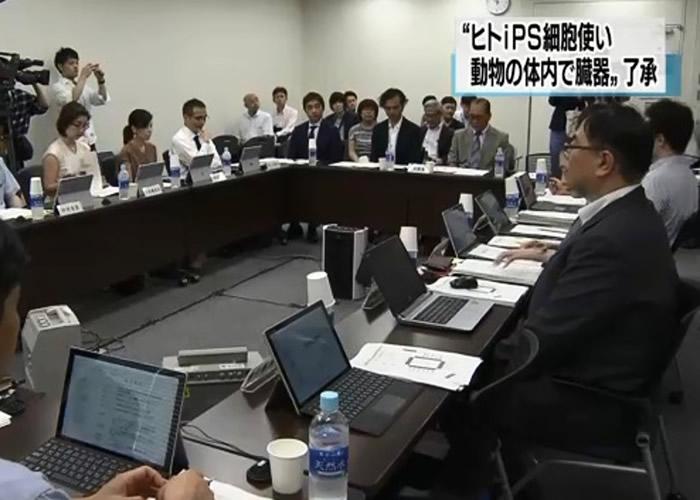 文科省专家委员会未有对研究大力反对。
