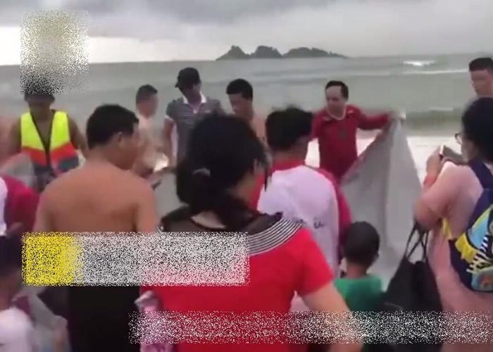 """广东阳江海滩3米长海豚搁浅 游客救生员合力""""抱回""""大海"""