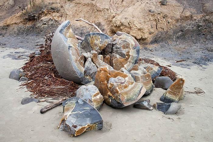 恐龙蛋化石、外星人遗物还是古人类留下的?新西兰南岛摩拉基小渔村海滩上的奇怪石头