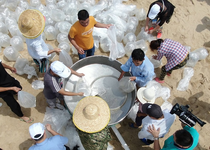 广东省茂名市渔民非法捕捞遇险获救 认罪后放生4.5万鱼苗