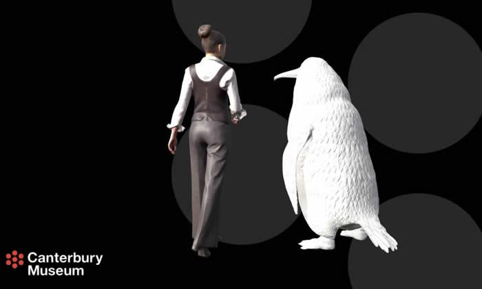 新西兰发现人类大小的古新世时期巨型企鹅化石