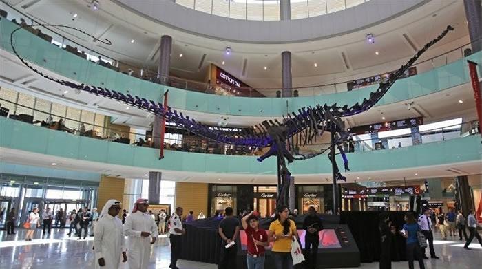 1.55亿年前恐龙骨架将出现在阿联酋拍卖会上