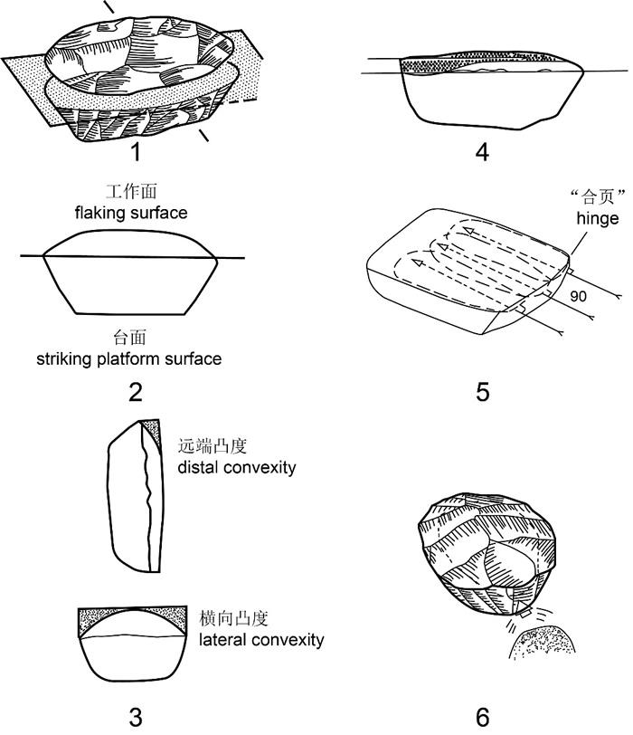 定义勒瓦娄哇技术的六项技术标准(修改自Boёda,1995)