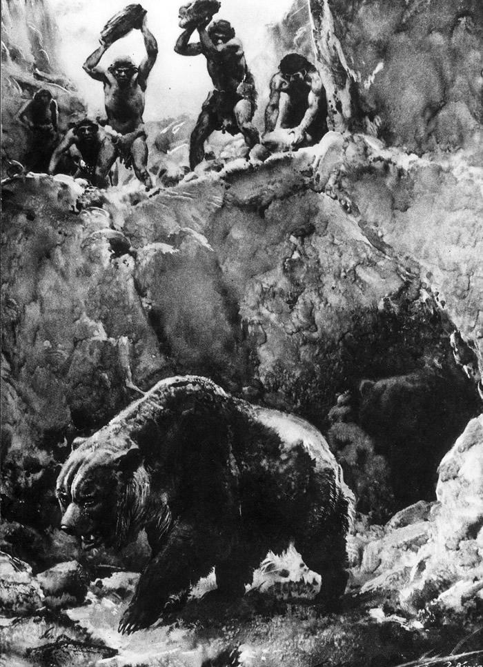洞熊灭绝原因新说:或是人类大规模猎杀所致