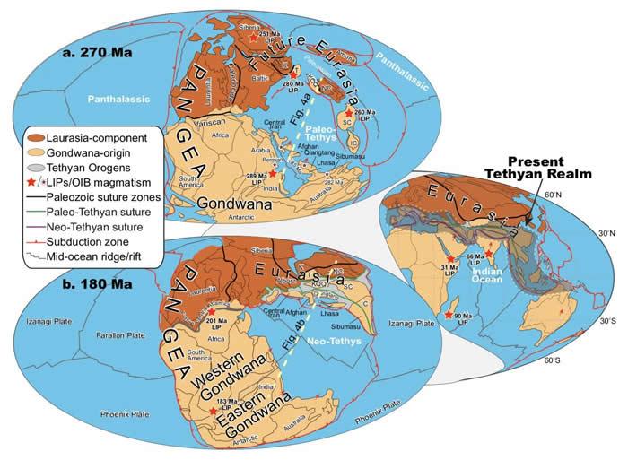 """特提斯洋的大洋板片向欧亚大陆的俯冲作用是驱动陆块漂移的""""引擎"""""""