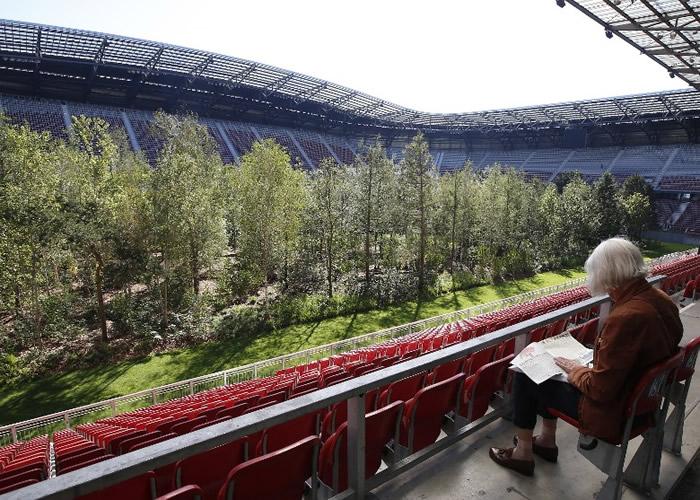 沃尔特湖足球场长出森林。